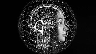 Stimulate Your Neurotransmitters with the One Cracked Fact Daily Newsletter!