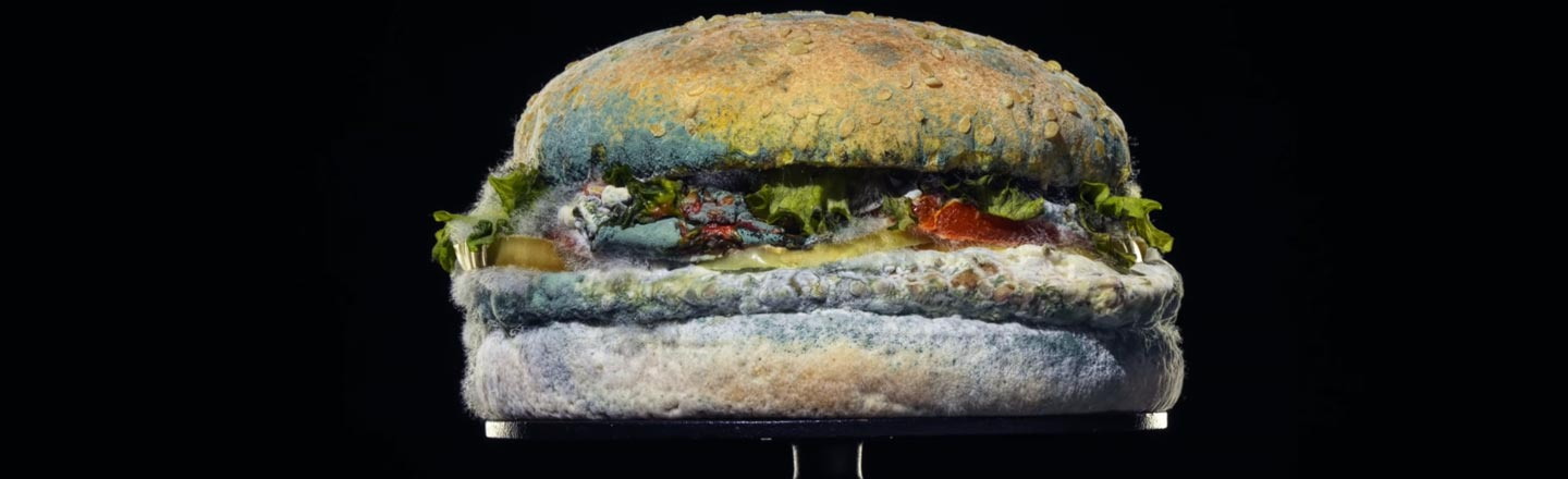 Burger King Is Embracing Mold Now