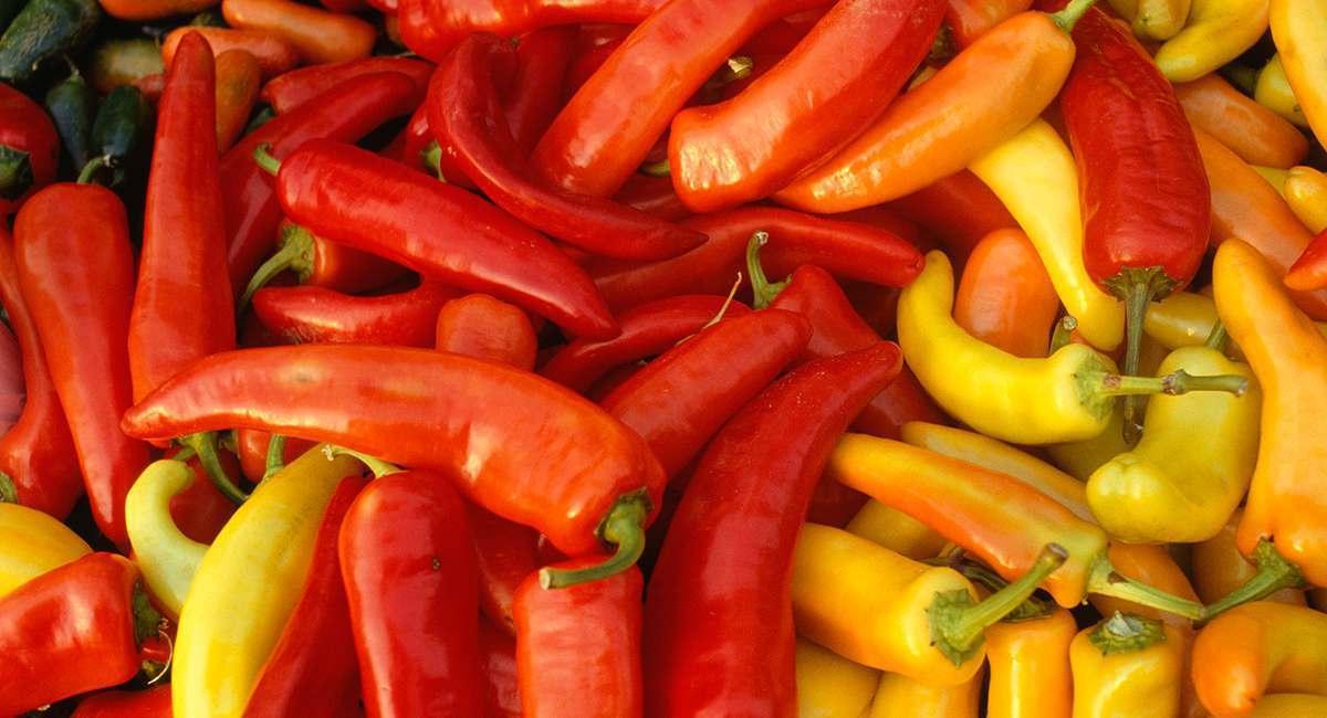 5 Shocking Backstories Of Your Favorite Foods