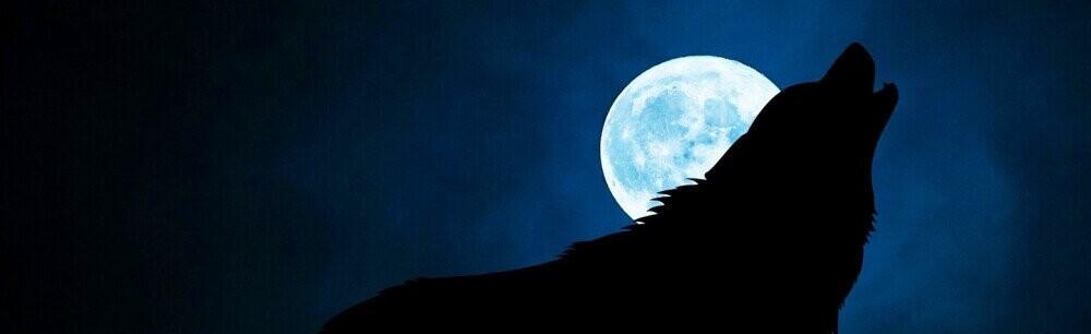 Give Us John Steinbeck's Werewolf Pulp Fiction, Cowards