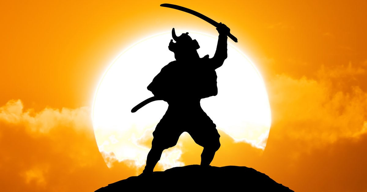 Image result for samurai + roble