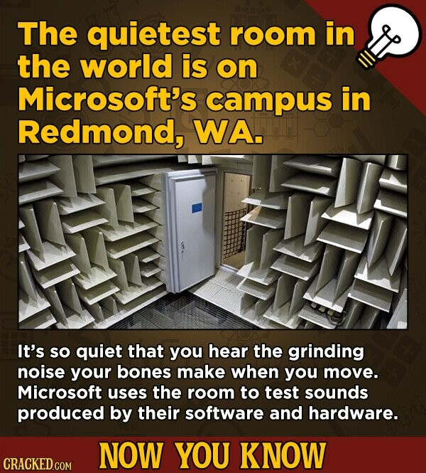 The quietest room in the world is on Microsoft's campus in Redmond, WA. It's SO quiet that you hear the grinding noise your bones make when you move. Microsoft uses the room to test sounds produced by their software and hardware. NOW YOU KNOW CRACKED GOM