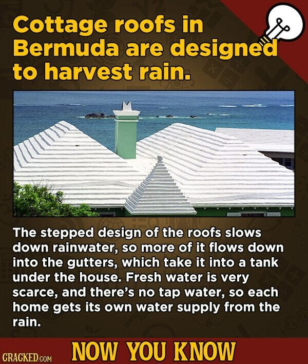 Cottage roofs in Bermuda are designed to harvest rain. The stepped design of the roofs slows down rainwater, SO more of it flows down into the gutters, which take it into a tank under the house. Fresh water is very scarce, and there's no tap water, SO each home gets