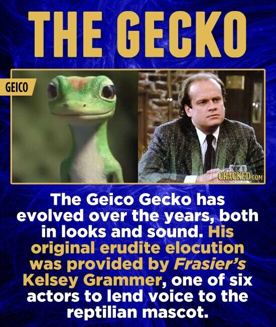 THE GECKO GEICO CRAGKED COM The Geico Gecko has evolved over the years, both in looks and sound. His original erudite elocution was provided by Frasier's Kelsey Grammer, one of six actors to lend voice to the reptilian mascot.
