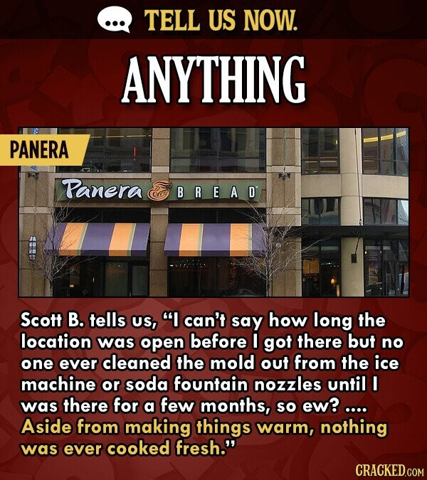 TELL US NOW. ANYTHING PANERA Panera BREAD C Scott B. tells US, I can't say how long the location was open before I got there but no one ever cleaned the mold out from the ice machine or soda fountain nozzles until I was there for a few months, So