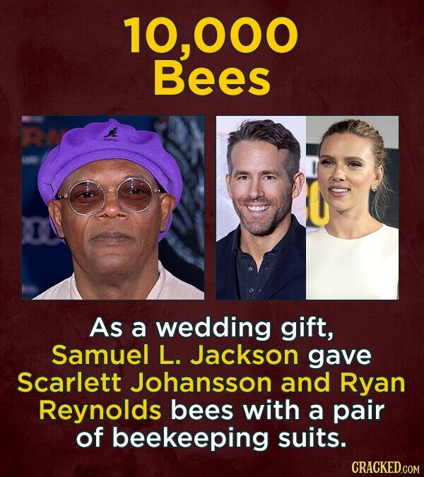 10, OOO Bees As a wedding gift, Samuel L. Jackson gave Scarlett Johansson and Ryan Reynolds bees with a pair of beekeeping suits. CRACKED.COM