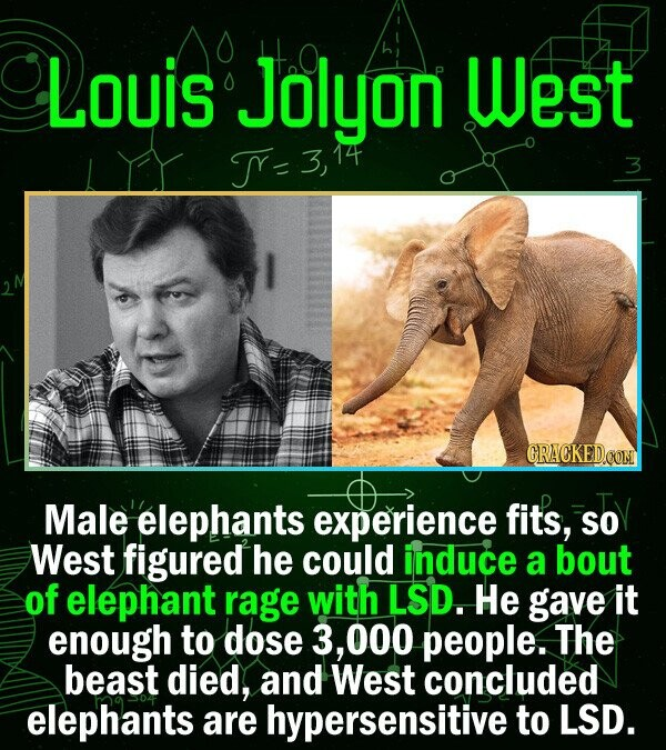 Louis Jolyon p West TY= 3 CRACKED.OON Male elephants experience fits, SO West figured he could induce a bout of elephant rage with LSD. He gave it eno