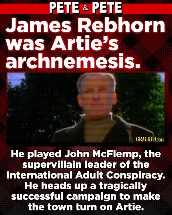PETE & PETE James Rebhorn was Artie's archnemesis. He played John McFlemp, the supervillain leader of the International Adult Conspiracy. He heads up a tragically successful campaign to make the town turn on Artie.