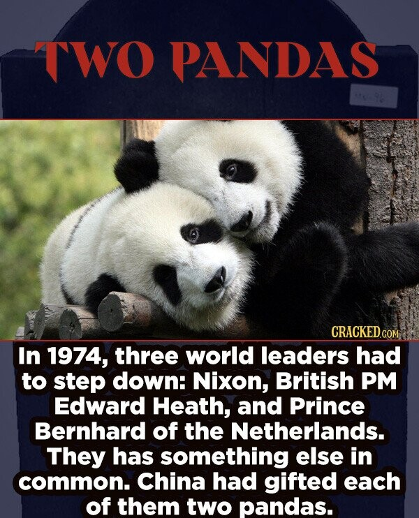 TWO PANDAS CRACKEDcO COM In 1974, three world leaders had to step down: Nixon, British PM Edward Heath, and Prince Bernhard of the Netherlands. They has something else in common. China had gifted each of them two pandas.