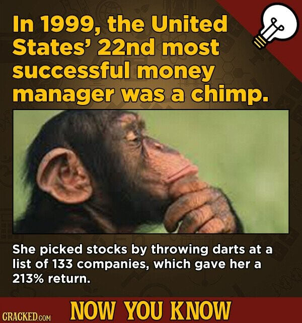 In 1999, the United States' 22nd most successful money manager was a chimp. She picked stocks by throwing darts at a list of 133 companies, which gave her a 213% return. NOW YOU KNOW CRACKED.COM