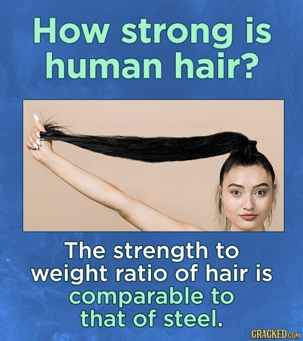 How strong is human hair? The strength to weight ratio of hair is comparable to that of steel.