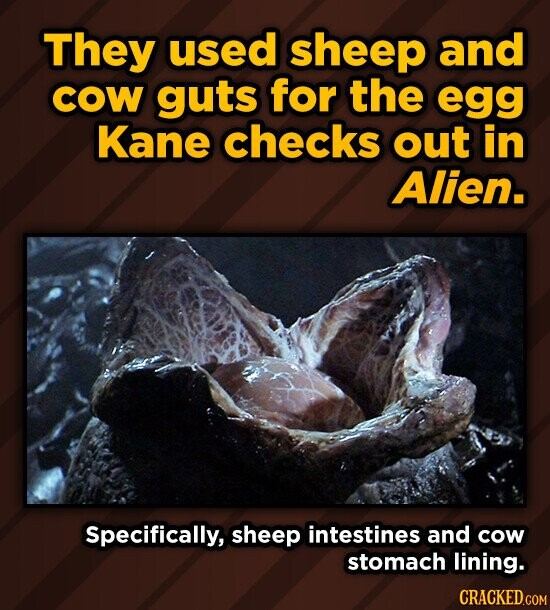 They used sheep and COW guts for the egg Kane checks out in Alien. Specifically, sheep intestines and cow stomach lining.