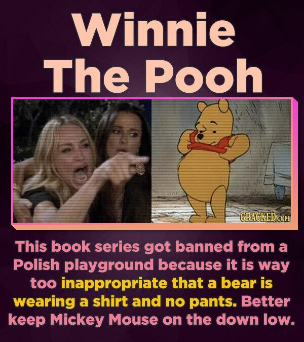 Winnie The Pooh This book series got banned from a Polish playground because it is way too inappropriate that a bear is wearing a shirt and no pants.