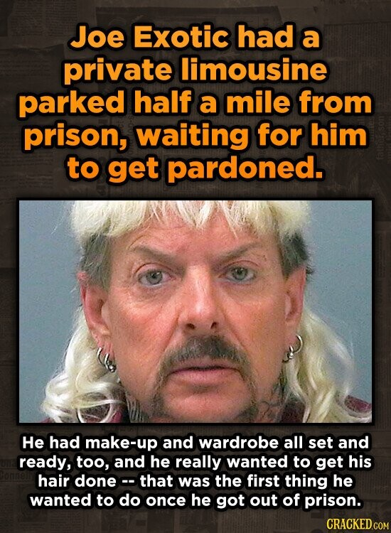 Joe Exotic had a private limousine parked half a mile from prison, waiting for him to get pardoned. He had make-up and wardrobe all set and ready, too, and he really wanted to get his hair donec- that was the first thing he wanted to do once he got out