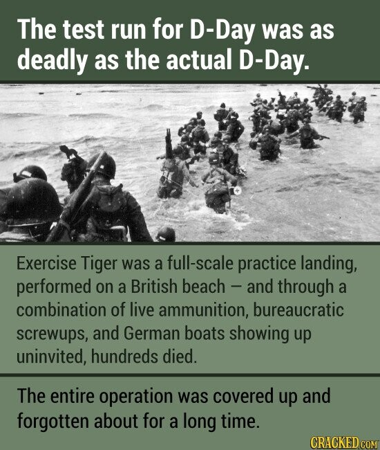 The test run for D-Day was as deAdly as the actual D-Day. Exercise Tiger was a full-scale practice landing, performed on a British beach and through a combination of live ammunition, bureaucratic screwups, and German boats showing up uninvited, hundreds died. The entire operation was covered up and forgotten about