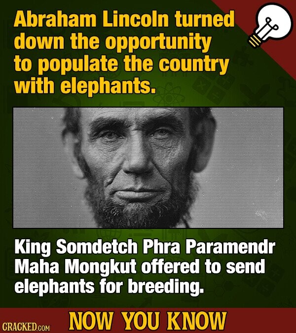 Abraham Lincoln turned down the opportunity to populate the country with elephants. King Somdetch Phra Paramendr Maha Mongkut offered to send elephants for breeding. NOW YOU KNOW CRACKED COM