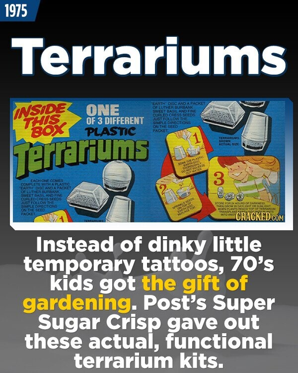 1975 Terrariums EARTH Dag AD PACKET INSIDE ONE FLUTHER BURBANKE SWEET RLASIL AD FINE SEEDS TTHIS OF 3 DIFFERENT JUSTFOLLOW THE SULDLE DRECTIONS Box PLASTIC ONTHE SEED PACKET Terrarum TERRARIUIME THON ACTUAL LIZE 3 EACONE COMES COMPLETE LAS AT 10402 AN PAOMET Srfy AA ANO FINE SEEDS BSMOTHE LOECIONS PACICET Instead of