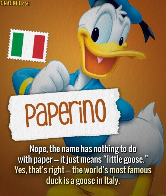 PAPERINO Nope, the name has nothing to do with paper- it just means little goose. Yes, that's right- the world's most famous duck is a goose in Italy.
