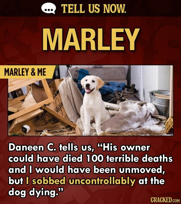 TELL US NOW. MARLEY MARLEY & ME itlps Daneen C. tells US, His owner could have died 100 terrible deaths and I would have been unmoved, but I sobbed uncontrollably at the dog dying.
