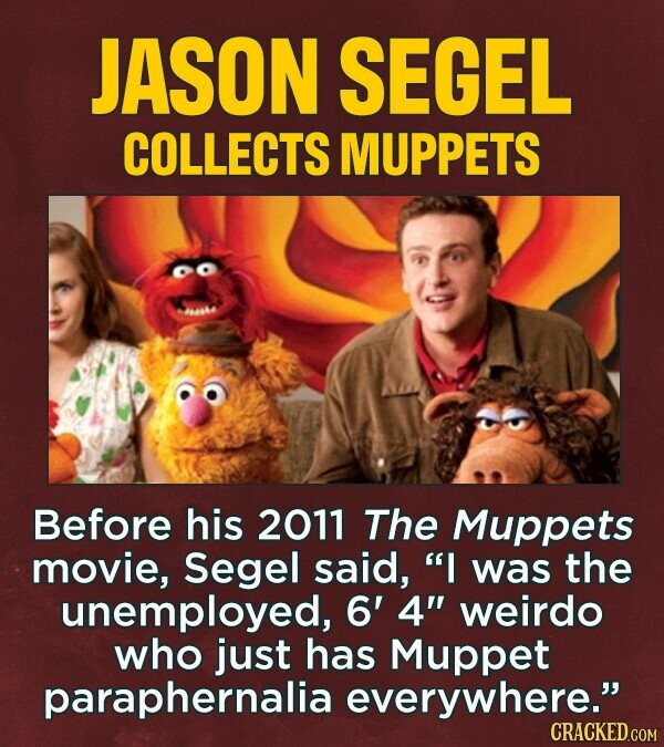JASON SEGEL COLLECTS MUPPETS Before his 2011 The Muppets movie, Segel said, I was the unemployed, 6' 4 weirdo who just has Muppet paraphernalia everywhere. CRACKED.COM