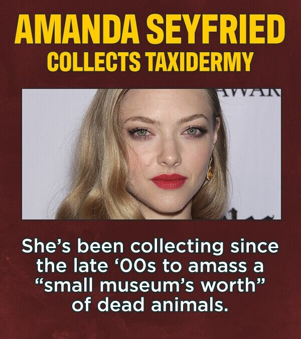 AMANDA SEYFRIED COLLECTS TAXIDERMY She's been collecting since the late 'OOs to amass a small museum's worth of dead animals.