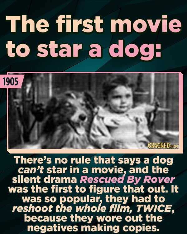 The first movie to star a dog: 1905 CRACKED COM There's no rule that says a dog can't star in a movie, and the silent drama Rescued By Rover was the first to figure that out. It was sO popular, they had to reshoot the whole film, TWICE, because they wore
