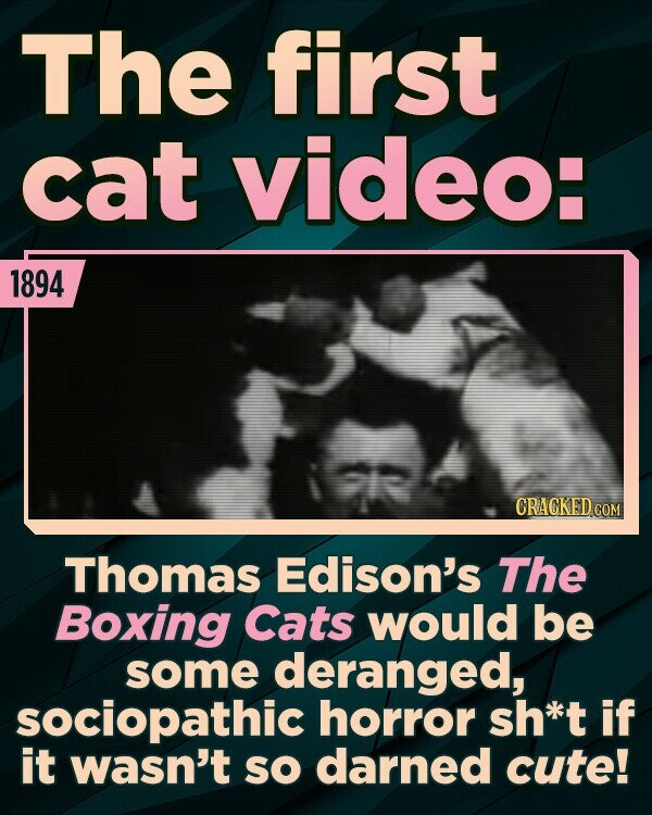 The first cat video: 1894 Thomas Edison's The Boxing Cats would be some deranged, sociopathic horror sh*kt if it wasn't sO darned cute!