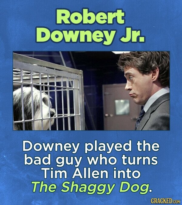 Robert Downey Jr. Downey played the bad guy who turns Tim Allen into The Shaggy Dog. CRACKED COM