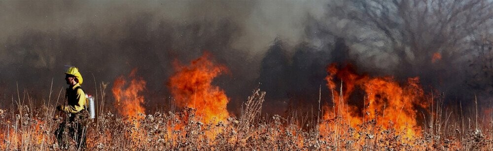 What's The Deal: Wildfires In The Western United States