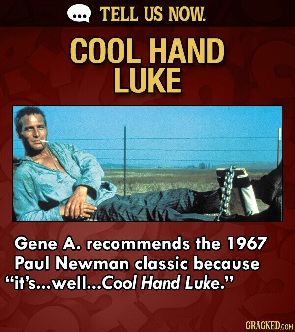 TELL US NOW. COOL HAND LUKE Gene A. recommends the 1967 Paul Newman classic because it's... well... Cool Hand Luke. CRACKED.COM