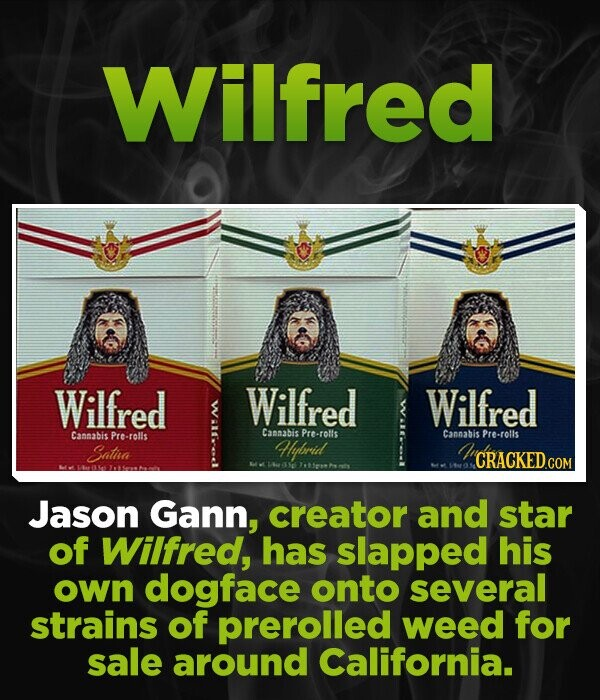 Wilfred Wilfred Wilfred Wilfred Cammabis Pre-rolls Camabis Pre-rolls Cannabis Pre-rolls Sata llrid CRACKED.COM Jason Gann, creator and star of Wilfred, has slapped his own dogface onto several strains of prerolled weed for sale around California.