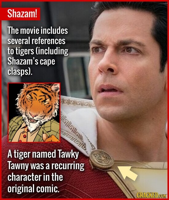 Shazam! The movie includes several references to tigers (including Shazam's cape clasps). laiile A tiger named Tawky Tawny was a recurring character i