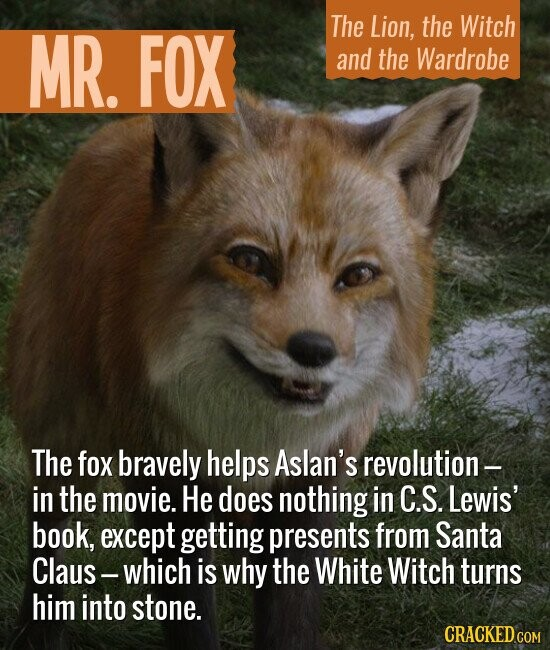 MR. The Lion, the Witch FOX and the Wardrobe The fox bravely helps Aslan's revolution- in the movie. He does nothing in C.S. Lewis' book, except getting presents from Santa Claus- -which is why the White Witch turns him into stone.