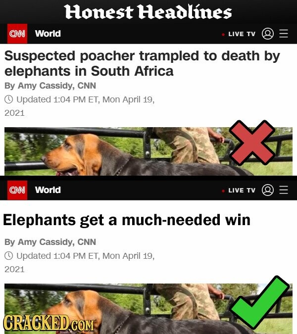 Honest Headlines CNN World LIVE TV Suspected poacher trampled to death by elephants in South Africa By Amy Cassidy, CNN O Updated 1:04 PM ET, Mon April 19, 2021 CNN World LIVE TV Elephants get a much-needed win By Amy Cassidy, CNN Updated 1:04 PM ET, Mon April 19, 2021