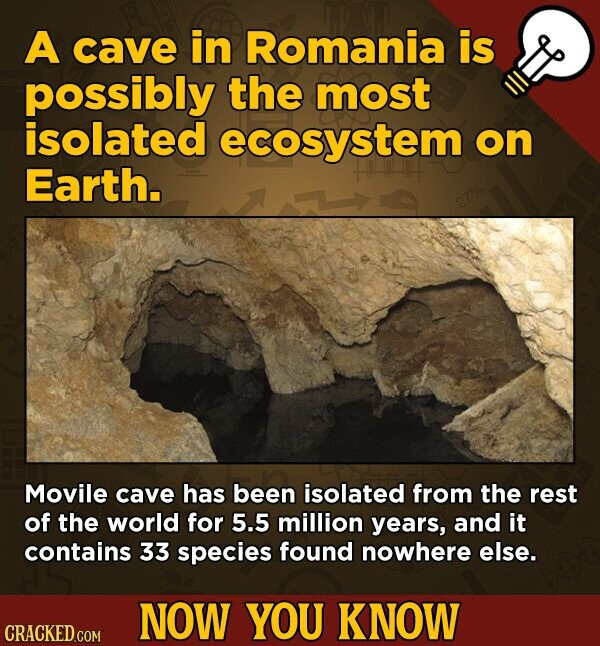 A cave in Romania is possibly the most isolated ecosystem on Earth. Movile cave has been isolated from the rest of the world for 5.5 million years, and it contains 33 species found nowhere else. NOW YOU KNOW
