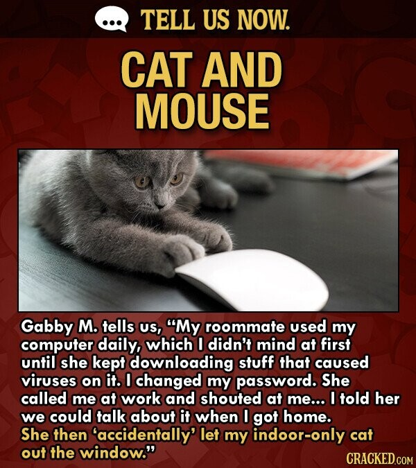 TELL US NOW. CAT AND MOUSE Gabby M. tells US, My roommate used my computer daily, which I didn't mind at first until she kept downloading stuff that caused viruses on it. I changed my password. She called me at work and shouted at me... told her we could