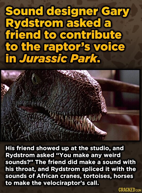 Sound designer Gary Rydstrom asked a friend to contribute to the raptor's voice in Jurassic Park. His friend showed up at the studio, and Rydstrom asked You make any weird sounds? The friend did make a sound with his throat, and Rydstrom spliced it with the sounds of African cranes,