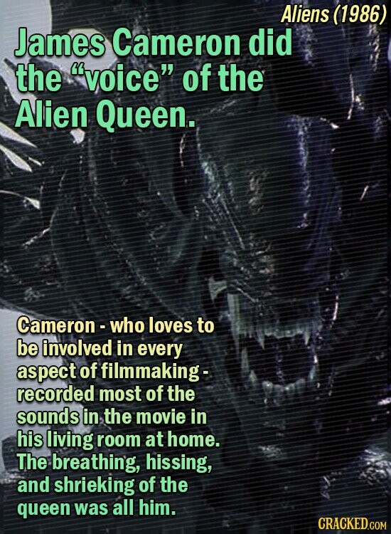Aliens (1986) James Cameron did the 'voice of the Alien Queen. Cameron- who loves to be involved in every aspect of filmmaking- recorded most of the sounds in the movie in his living room at home. The breathing, hissing, and shrieking of the queen was all him.