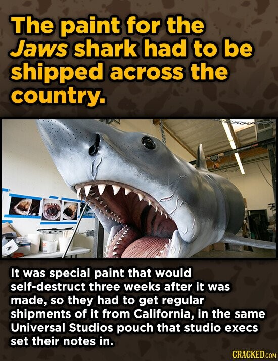 The paint for the Jaws shark had to be shipped across the country. It was special paint that would self-destruct three weeks after it was made, so they had to get regular shipments of it from California, in the same Universal Studios pouch that studio execs set their notes in.
