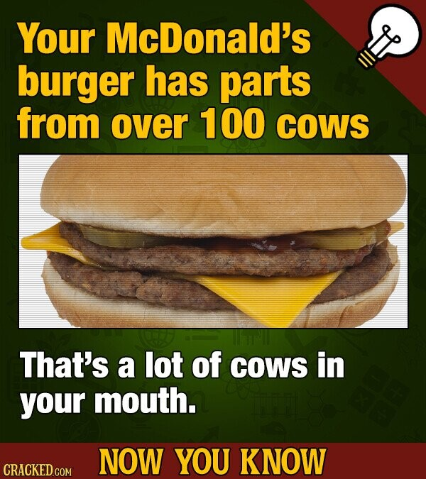 Your McDonald's burger has parts from over 100 COWS That's a lot of COWS in your mouth. NOW YOU KNOW CRACKED COM