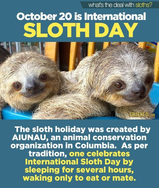 what's the deal with sloths? October 20 is International SLOTH DAY CRAGKEDCOM The sloth holiday was created by AIUNAU, an animal conservation organization i in Columbia. As per tradition, one celebrates International Sloth Day by sleeping for several hours, waking only to eat or mate.