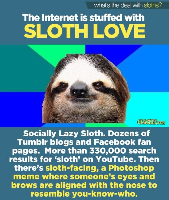 what's the deal with sloths? The Internet is stuffed with SLOTH LOVE Socially Lazy Sloth. Dozens of Tumblr blogs and Facebook fan pages. More than 330,000 search results for 'sloth' on YouTube. Then there's sloth-facing, a Photoshop meme where someone's eyes and brows are aligned with the nose to