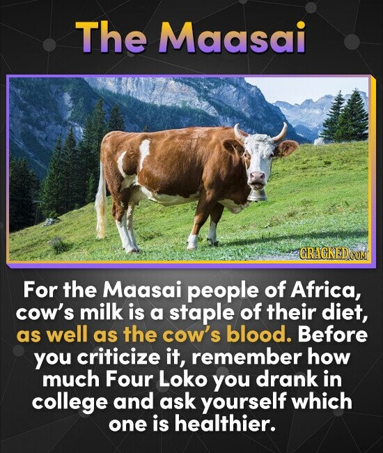 The Maasai CRACKEDO For the Maasai people of Africa, cow's milk is a staple of their diet, as well as the cow's blood. Before you criticize it, rememb