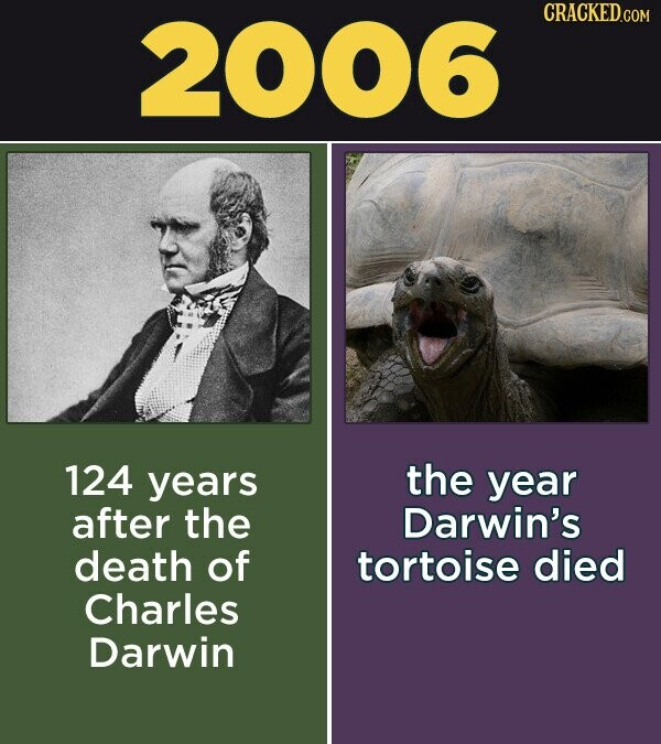 2006 CRACKED.COM 124 years the year after the Darwin's death of tortoise died Charles Darwin