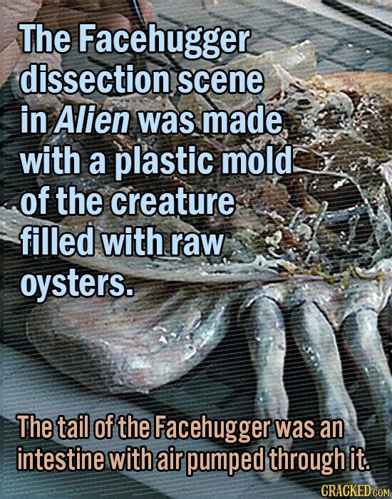 The Facehugger dissection scene in Alien was made with a plastic mold of the creature filled with raw oysters. The tail of the Facehugger was an intestine with air pumped through it.