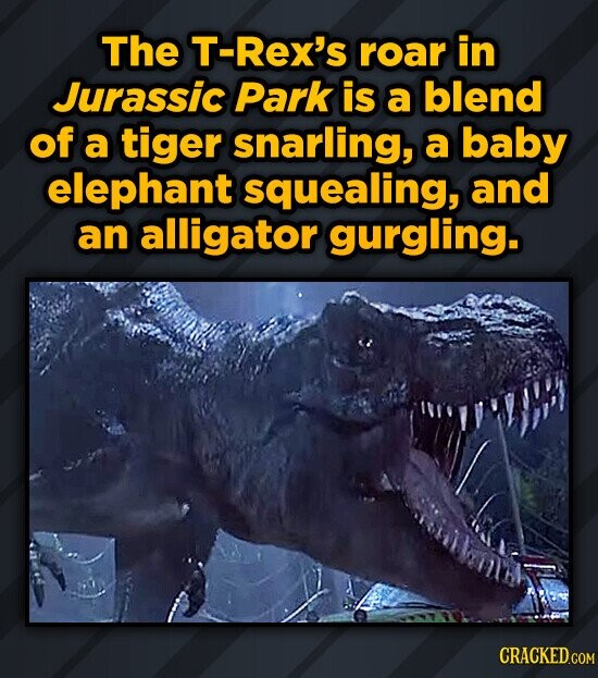 The T-Rex's roar in Jurassic Park is a blend of a tiger snarling, a baby elephant squealing, and an alligator gurgling.