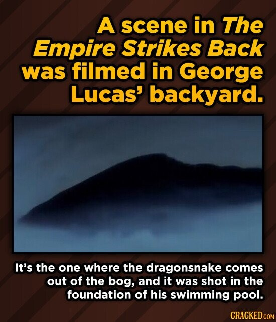 A scene in The Empire Strikes Back was filmed in George Lucas' backyard. It's the one where the dragonsnake comes out of the bog, and it was shot in the foundation of his swimming pool.