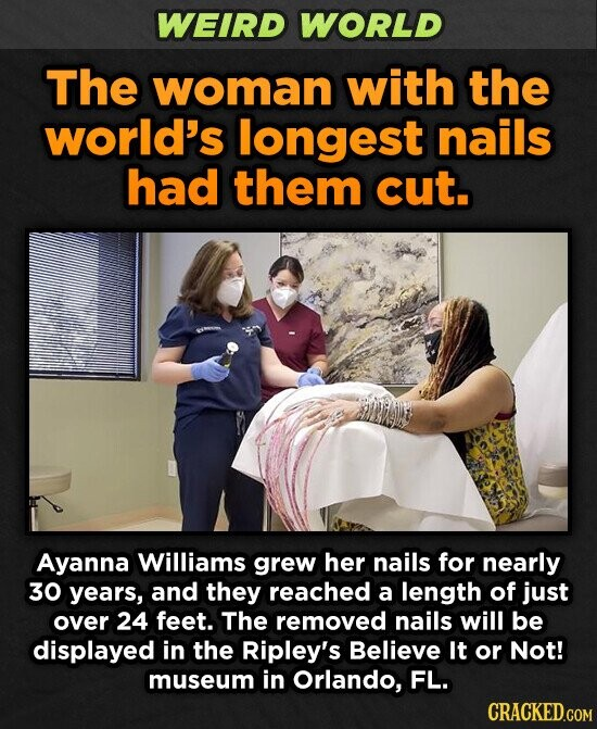 WEIRD WORLD The woman with the world's longest nails had them cut. Ayanna Williams grew her nails for nearly 30 years, and they reached a length of just over 24 feet. The removed nails will be displayed in the Ripley's Believe It or Not! museum in Orlando, FL. CRACKED.COM