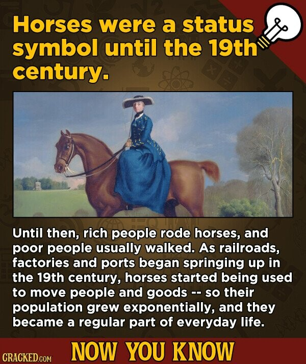Horses were a status symbol until the 19th century. Until then, rich people rode horses, and poor people usually walked. As railroads, factories and ports began springing up in the 19th century, horses started being used to move people and goods - So their population grew exponentially, and they became a