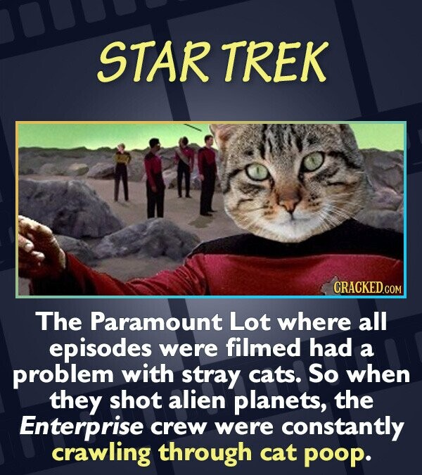 STAR TREK CRACKEDCOR The Paramount Lot where all episodes were filmed had a problem with stray cats. So when they shot alien planets, the Enterprise c